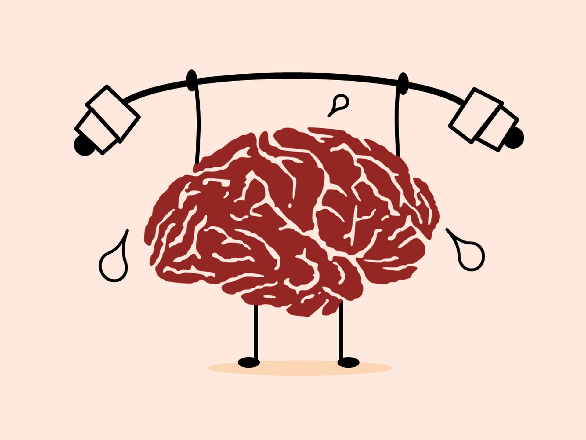 Brain lifting weights exercise and studying