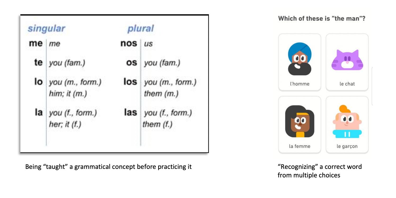 Language lesson for language production