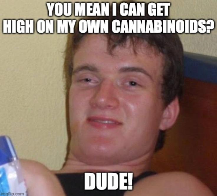 Stupid dude talking about cannabinoids