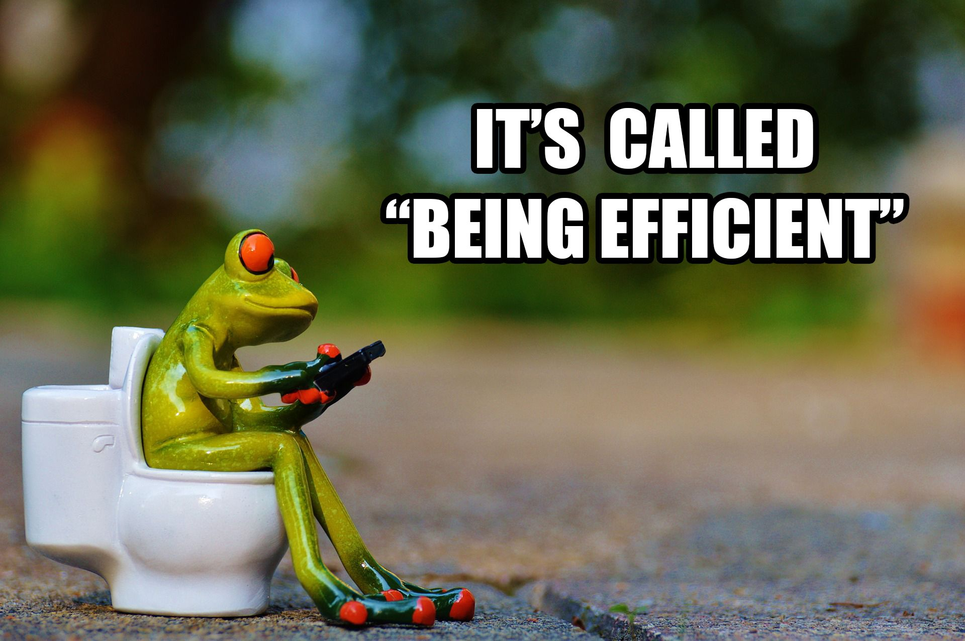 A motivated frog on the toilet