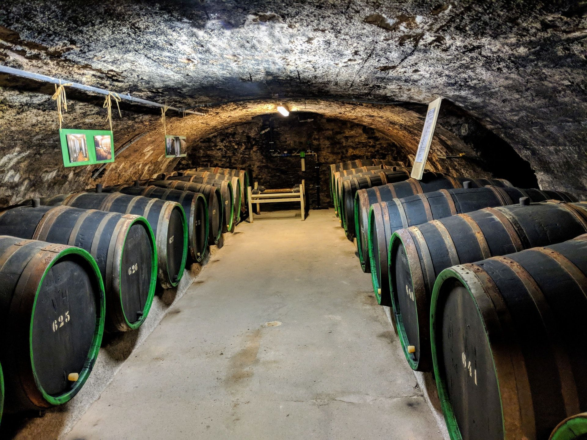 Celler with wine barrells; WSET Level 2 exam