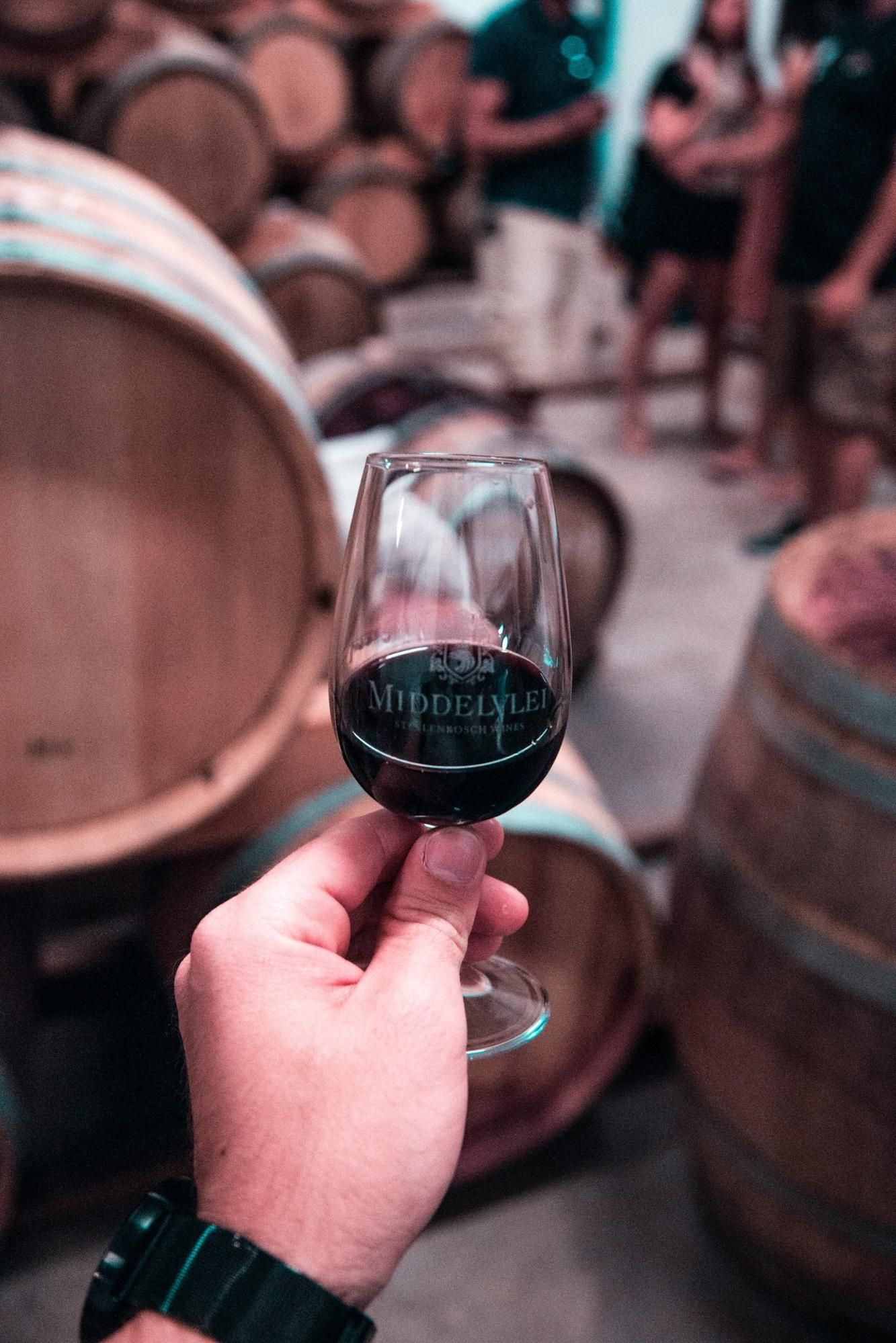 Glass of red wine, WSET 3 study tips