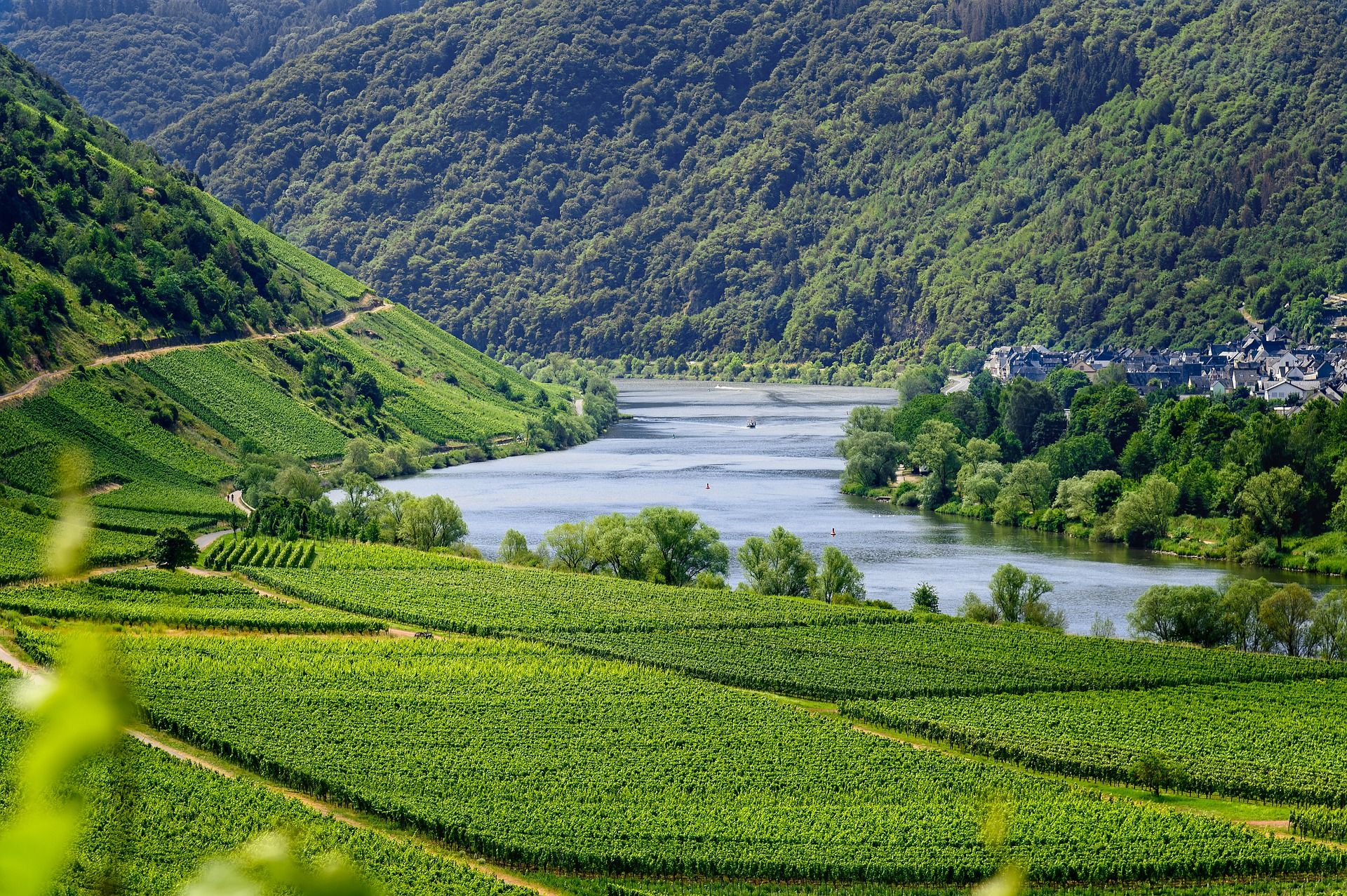 The Mosel Valley in Germany