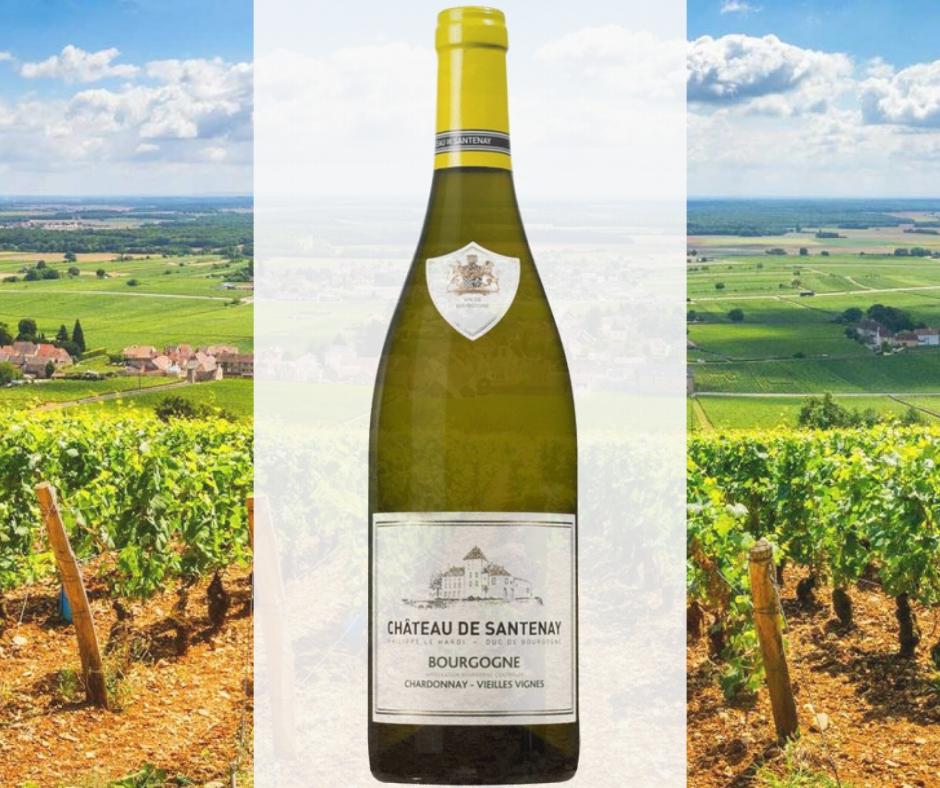 Bourgogne Blanc; White Burgundy wine