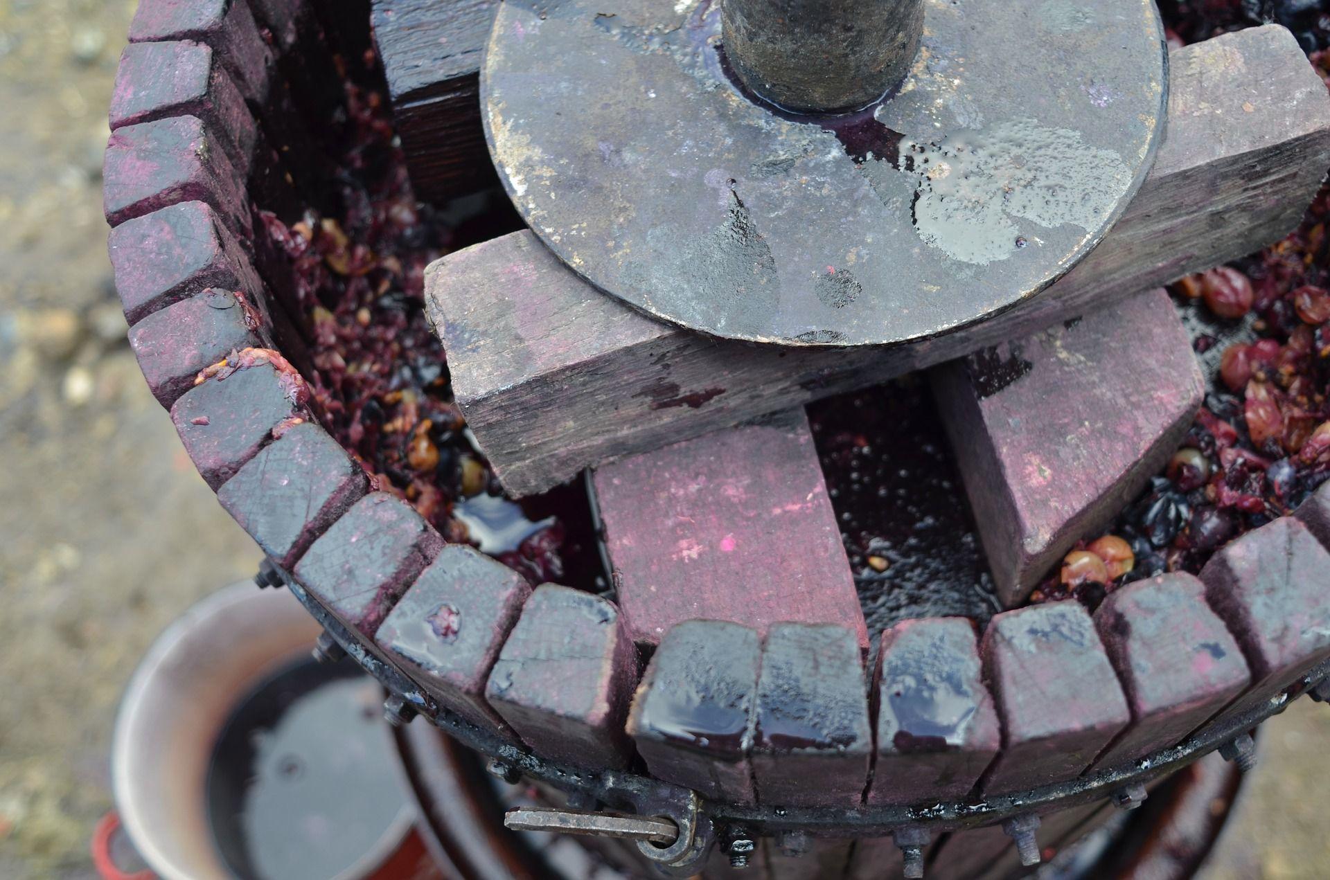 Grape pressing machine; how to make wine at home