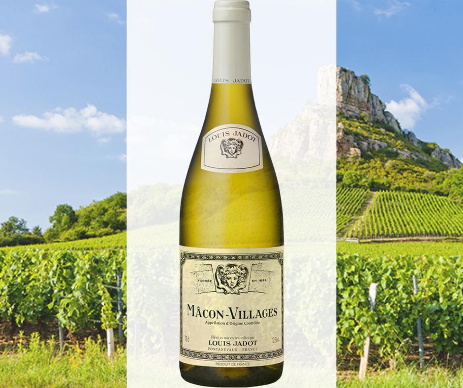 Mâconnais wines; White Burgundy wine